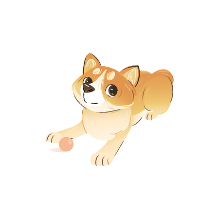 A little dog or a cute welsh corgi puppy sits and plays with a ball. Funny hand drawn corgi pet in cartoon style. Domestic animal, isolated vector illustration.
