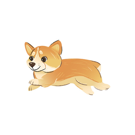 Side view of cute running dog breeds Welsh Corgi cartoon style, vector illustration isolated on white background. Happy active puppy pet is running or jumping, dog animal character Illustration