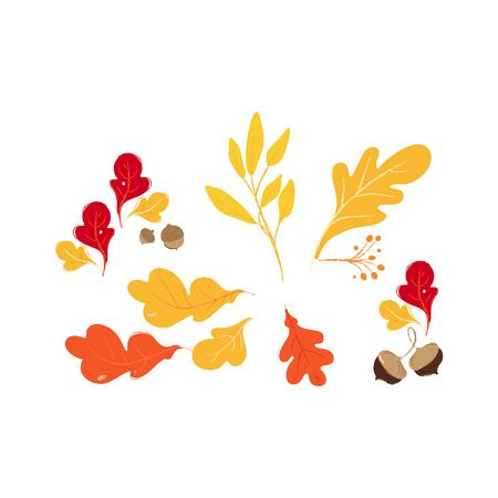 Set aus roten, orangefarbenen und gelben Herbst- und Herbsteichenwäldern und braunen Eicheln. Isolierte handgezeichnete Vektorillustration von Herbst- und Herbstblättern.