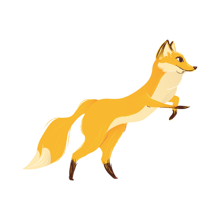 Cute cartoon forest wild animal the fox in a jump motion flat vector illustration isolated on white background. Wildlife or zoo character fox the design element. Illustration