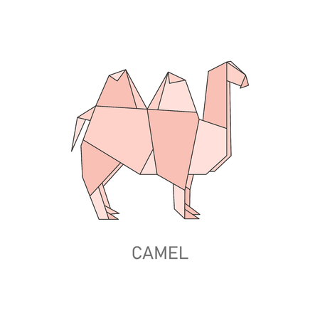 Origami camel isolated on white background, Geometric design of Japanese folded paper art, desert animal silohuette shape from Africa in cartoon line art style, flat vector illustration Çizim
