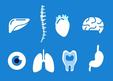 Human organ icons set - medical flat vector illustration collection of anatomy parts - liver, spine, heart, brain, eye, lungs, tooth, kidney isolated on blue background.
