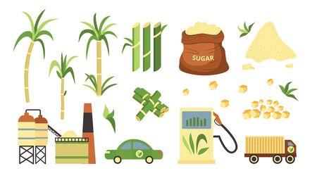 Usine de canne à sucre et ensemble de produits, carburant alternatif et poudre de canne à sucre en cubes et granulés. Arbre de plante de ferme verte et voiture et camion obtenant du carburant - illustration vectorielle de dessin animé plat isolé Vecteurs