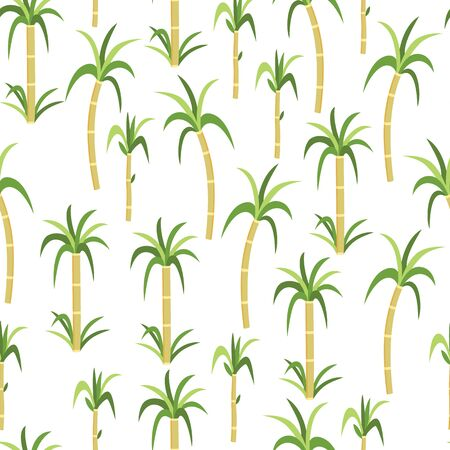Sugarcane or cane plants seamless pattern for design organic sugar containing foods package, flat vector illustration on the white background. Natural ecological products.