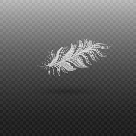 Piuma di cigno volante singola realistica. Morbida piuma di uccello bianca realistica con lanugine. Illustrazione vettoriale di piuma di uccello su uno sfondo trasparente. Vettoriali