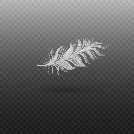 Realistic single flying swan feather. Soft realistic white bird feather with fluff. Vector illustration of bird feather on a transparent background.