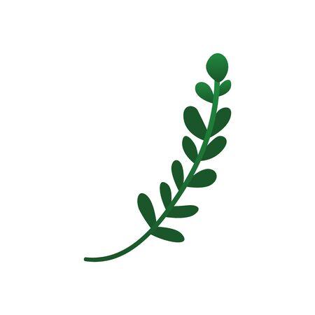 Grünpflanzenzweig mit runden Blättern, isoliert auf weißem Hintergrund. Netter einfacher Baumzweig für Dekoration - flache Vektorillustration. Vektorgrafik