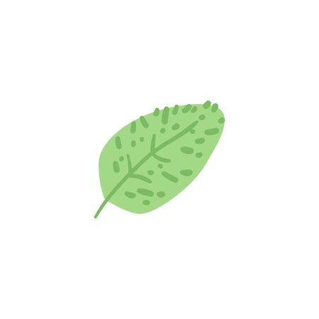 Abstract green leaf of a fantastic or prehistoric plant. Isolated flat cartoon natural vector illustration. Çizim