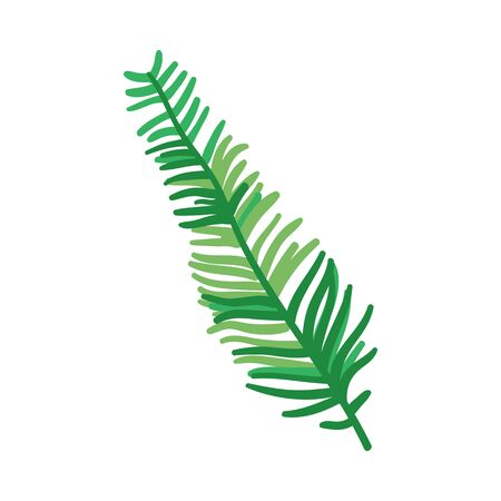 Green leaf of fern o brake, foliage of abstract plant, flat cartoon vector illustration on isolated background.