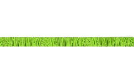Vettore verde erba tagliata bordo orizzontale per la progettazione del paesaggio estivo. Elemento di decorazione naturale per parchi, giardini o scenari di campi rurali. Oggetto di prato o piante. Illustrazione isolata Vettoriali