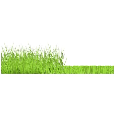 Vector green grass cut border for summer landscape design. Natural decoration element for parks, gardens or rural fields scenery. Lawn or plants object. Isolated illustration Illustration