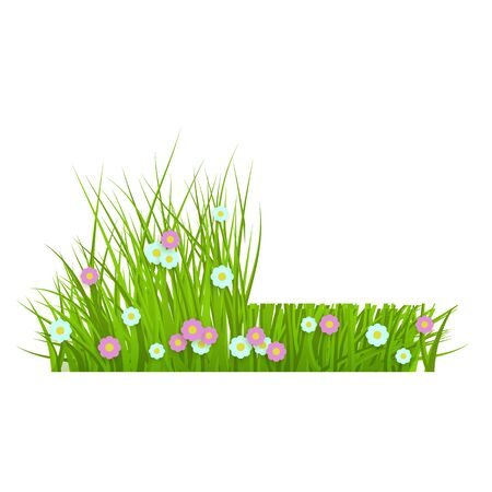 Summer, spring floral lush green grass and lawn border on isolated background in realistic style, vector illustration with flowers, daisies. Floral grass before and after mowing. Illustration