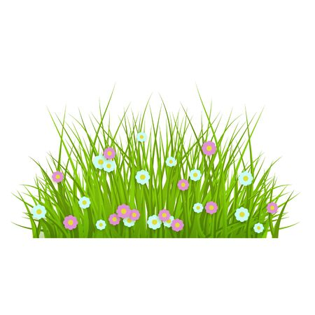Summer, spring floral lush green grass and lawn border on isolated background in realistic style, vector illustration with flowers, daisies. Illustration