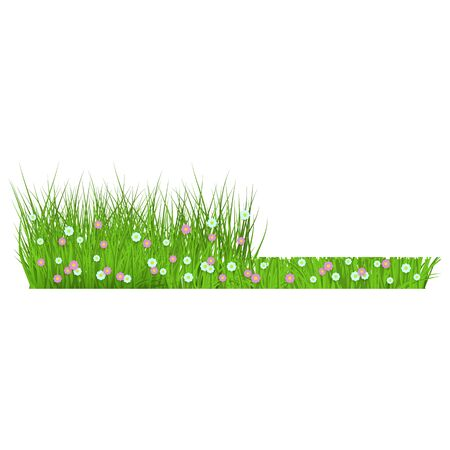 Summer, spring floral lush green grass and lawn border on isolated background in realistic style with flowers, daisies. Floral grass before and after mowing, vector illustration.