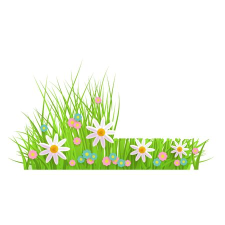 Spring floral green grass and lawn border on isolated background in realistic style with chamomile and daisies, before and after mowing, vector illustration. Иллюстрация