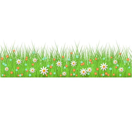 Summer, spring floral lush green grass and lawn seamless border on isolated background in realistic style. Vector illustration with flowers, chamomiles and daisies. Illustration