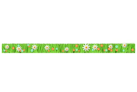 Mowed and trimmered floral green grass, lawn border on isolated background in realistic style, vector illustration with flowers. Grass with meadow flowers, chamomiles and daisies.