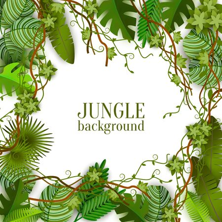 Tropical jungle lianas vine and palm leaves banner with copy space for text the vector illustration isolated on white background. Green summer exotic plants fashion layout.