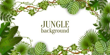 Tropical jungle exotic lianas vine and palm leaves banner with copy space for text the vector illustration isolated on white background. Green summer plants fashion design.