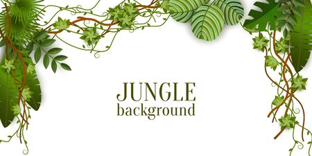 Green jungle plants background hanging from above, tropical exotic palm leaves and liana branches - isolated text template with blank space - realistic border vector illustration Vectores