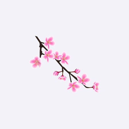 Small isolated sakura tree twig with realistic flowers, pink cherry blossom branch from Japanese spring blooming season, floral decorative element vector illustration