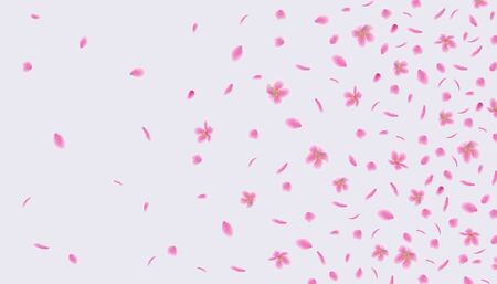 Pink sakura flower petals floating in the wind - abstract background of cherry blossom flowers flying in air. Beautiful realistic floral vector illustration