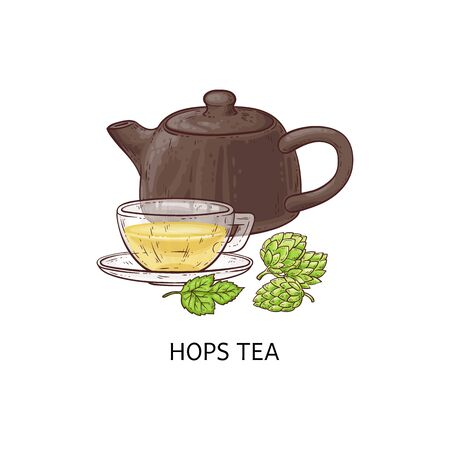 Hops tea - cup and teapot with healthy yellow herbal drink from hop plant, fresh medicinal herb in leaf and beverage form, isolated hand drawn vector illustration Illustration