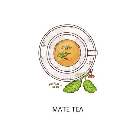 Mate tea drink in glass cup, traditional Argentina yerba herb beverage from top view with green leaves and berries, teacup and plate combo with yellow liquid - isolated hand drawn vector illustration Иллюстрация