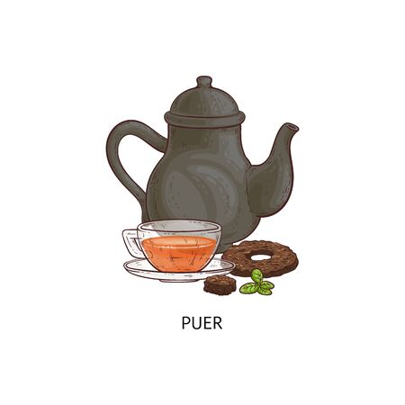 Puer tea - traditional Asian hot drink in glass teacup and black teapot, pressed Chinese herb drink in round donut shape and green leaves - isolated hand drawn vector illustration