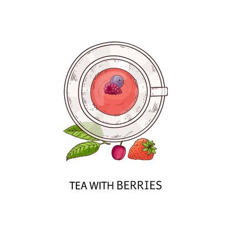 Tea with berries - pretty red drink in glass cup and plate with fruit, healthy beverage with blueberry, raspberry, cherry, strawberry and mint leaves arrangement, isolated vector illustration 向量圖像