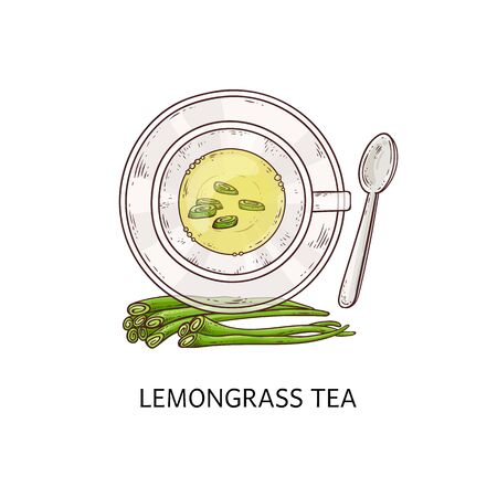 Lemongrass tea in a white cup with shoots of plant icon vector illustration in sketch style isolated on white background. One of the various organic herbal tea types.