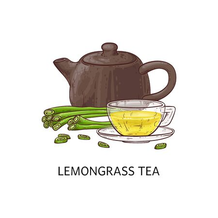 Lemongrass yellow tea concept with clay and ceramic teapot and glass cup. Isolated hand drawn vector illustration of lemongrass herbal tea, teapot and cup.