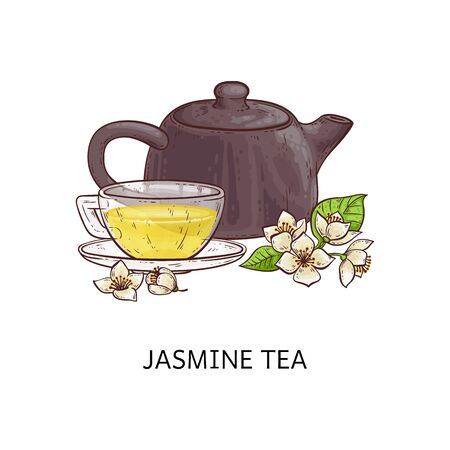 Jasmine tea - hot yellow beverage in glass cup, pretty flowers with leaves and brown teapot. Healthy herbal drink from flower leaf isolated on white background, vector illustration