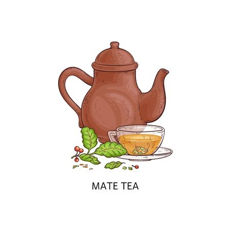 Mate tea - traditional hot drink from yerba herb plant in glass cup with brown teapot. Green leaves and berries branch next to composition still of Argentina beverage - isolated vector illustration Иллюстрация