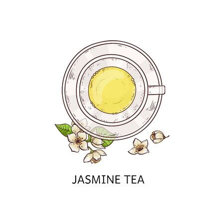 Jasmine tea top view drawing - glass cup with yellow beverage on plate with white flower and leaf arrangement, healthy traditional drink - isolated hand drawn vector illustration