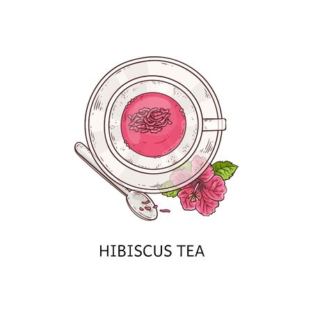 Hibiscus tea - pretty pink drink with dry flower petals floating inside glass cup. Teacup, plate and spoon still arrangement, top view of carcade beverage - isolated vector illustration