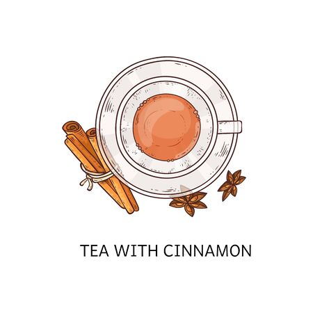 Tea with cinnamon - hot winter drink in glass cup seen from top view, teacup and plate arrangement with spice sticks and flowers, isolated hand drawn vector illustration