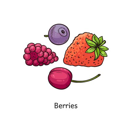 Colorful berry drawing set - hand drawn strawberry, blueberry, raspberry and cherry collection isolated on white background, healthy vitamin food vector illustration