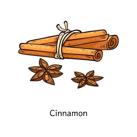 Set di disegno di fiori e bastoncini di cannella - bastoncini di spezie disegnati a mano legati da una corda, spezie da cucina di cartoni animati e illustrazione vettoriale di ingredienti isolati su sfondo bianco Vettoriali