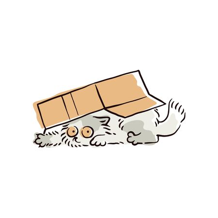 Funny cartoon cat hiding under a box, cute grey kitten playing and peeking from under a cardboard container. Simple feline pet drawing vector illustration
