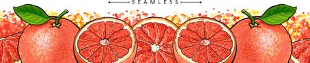 Grapefruit seamless panorama border drawing - red juicy citrus fruit sliced in half and whole on colorful background, tropical summer food background element - vector illustration