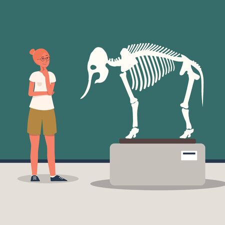 A female museum visitor stands in front of a tyrannosaurus dinosaur skeleton in the exposition room of the museum of archeology, flat cartoon vector illustration.