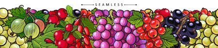 Hand drawn fresh berries - seamless panorama banner isolated on white background. Healthy dessert food group - grapes, cranberry, blueberry, etc - cartoon vector illustration