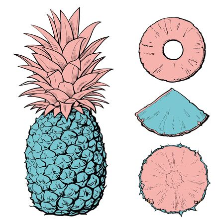 Bright blue and pink pineapple cut into slices and slices. Ananas and pineapple fruit set with rings and slices, pieces and parts. Isolated hand drawn retro food vector illustration. Illusztráció