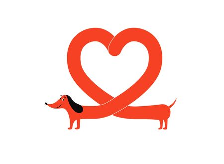 Red dachshund dog with heart shape body, cute pet animal forming a love symbol. Cartoon character smiling and standing isolated on white background - vector illustration