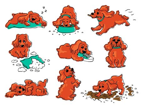 Dog behavior drawing set - cartoon orange puppy sleeping, eating, playing, lying in different positions. Good and naughty behaviour examples - isolated vector illustration. Ilustração