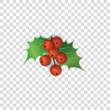 Red holly berries with green leaves isolated on transparent background - cute Christmas berry decoration plant in cartoon style - colorful twig vector illustration