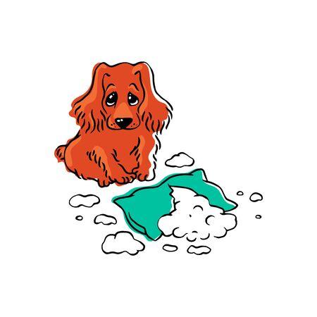 Il cane mastica il cuscino