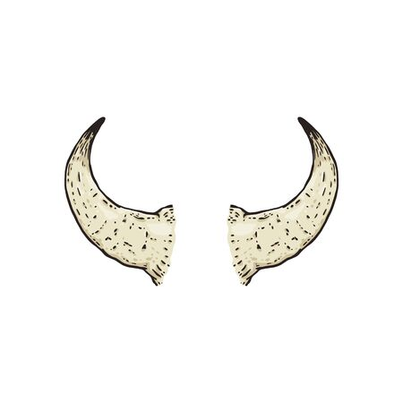 Buffalo hand drawn horns the cartoon   isolated on white