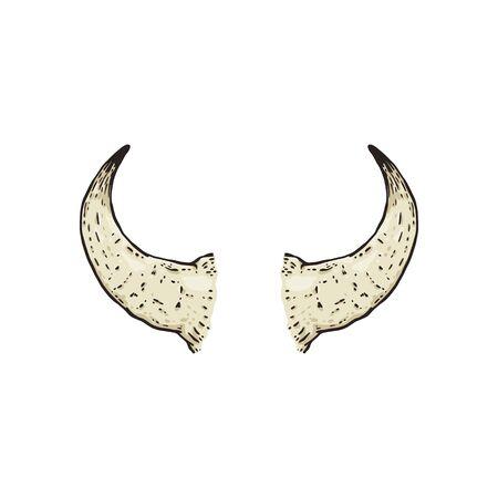 Buffalo hand drawn horns the cartoon   isolated on white